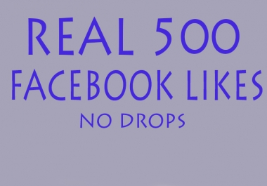 provide 500 Facebook Followers