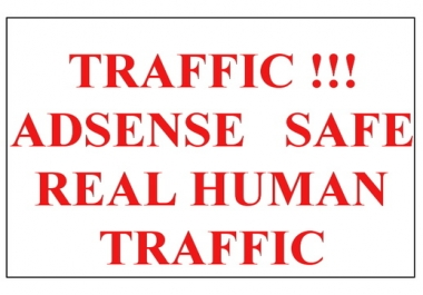 Add Real 3000+ Genuine Traffics Mostly USA for your website-anylinks-Blogs