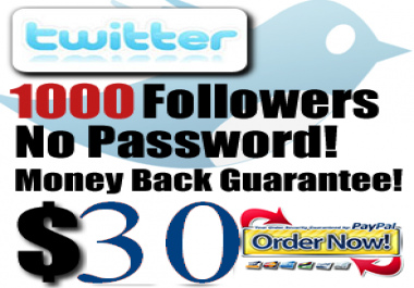 deliver 1000 twitter followers