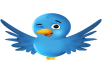 add 3,333 Twitter followers followers on twitter tweet