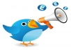 add over 7,000+ Twitter FOLLOWERS To your Twitter Account without needing your p word or admin access within 12 hours