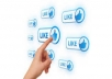 provide 500 real facebook likes