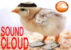 give 2000 real soundcloud plays