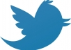 give 250 real twitter followers from India