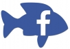 give real and permanent facebook Followers