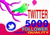 give you 5000 REAL Twitter Followers