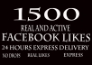 promote you 1500 Real Facebook fanpage likes