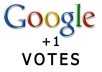 Give you USA Base Real 1000 Google Plus Votes for Website Link
