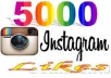 add 5000 Verified Instagram Photo Likes or 10,000 Twitter Followers in your account