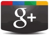 provide 300 Google+ votes