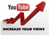 Get you 10,000 To 11,000 Youtube Views In cheap Rate