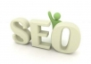 submit your site to 3150 websites